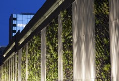 Snowhill Living Wall
